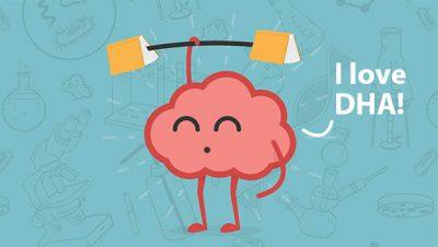 Brain loves DHA