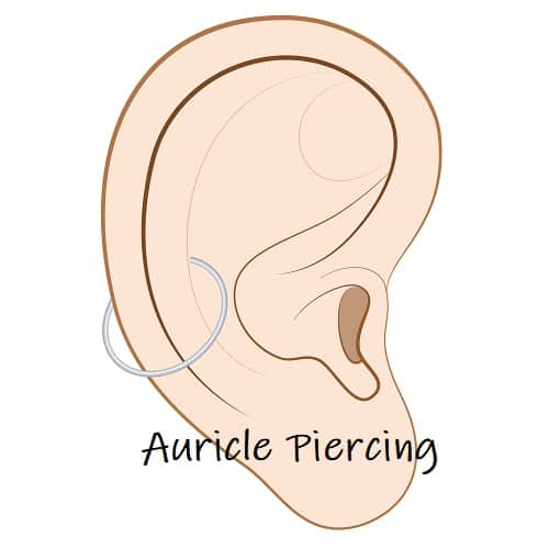 Cartilage Piercing ears auricle