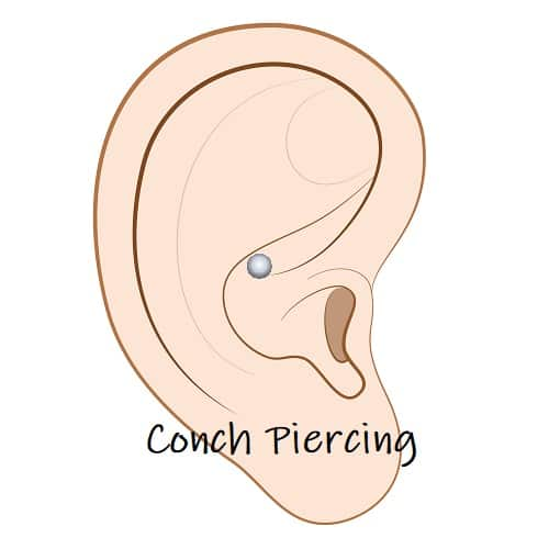 Cartilage Piercing ears conch