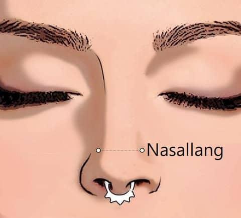 types of nose piercings Nasallang Piercing