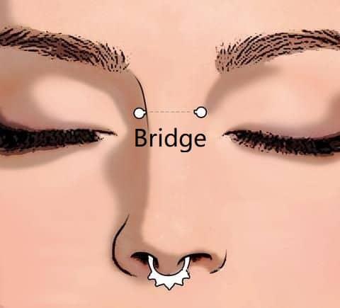 types of nose piercings types Bridge