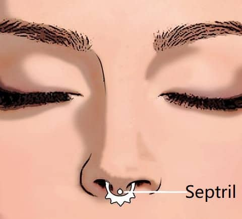 types of nose piercings types Septril
