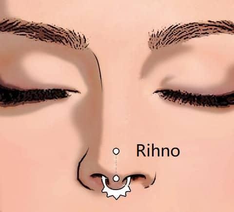types of nose piercings types rhino