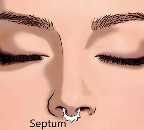 types of nose piercings types septum